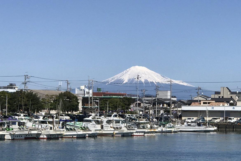 見事な富士山。絶景です!