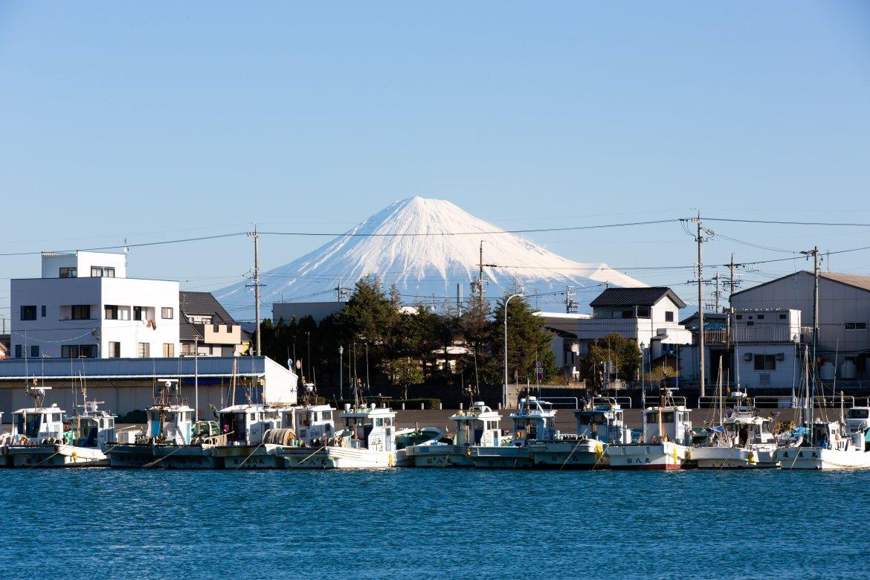 静岡県民割「バイ・シズオカ」が10月18日(月)より再開されます!